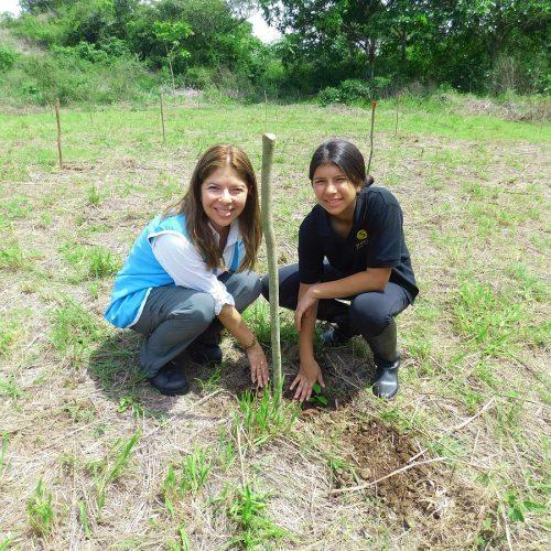 fundacion_shahani_reforestacion_img